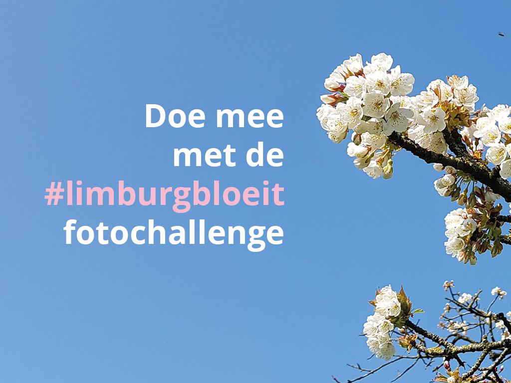 Hoe ziet jouw lente eruit? Doe mee met onze #limburgbloeit fotochallenge