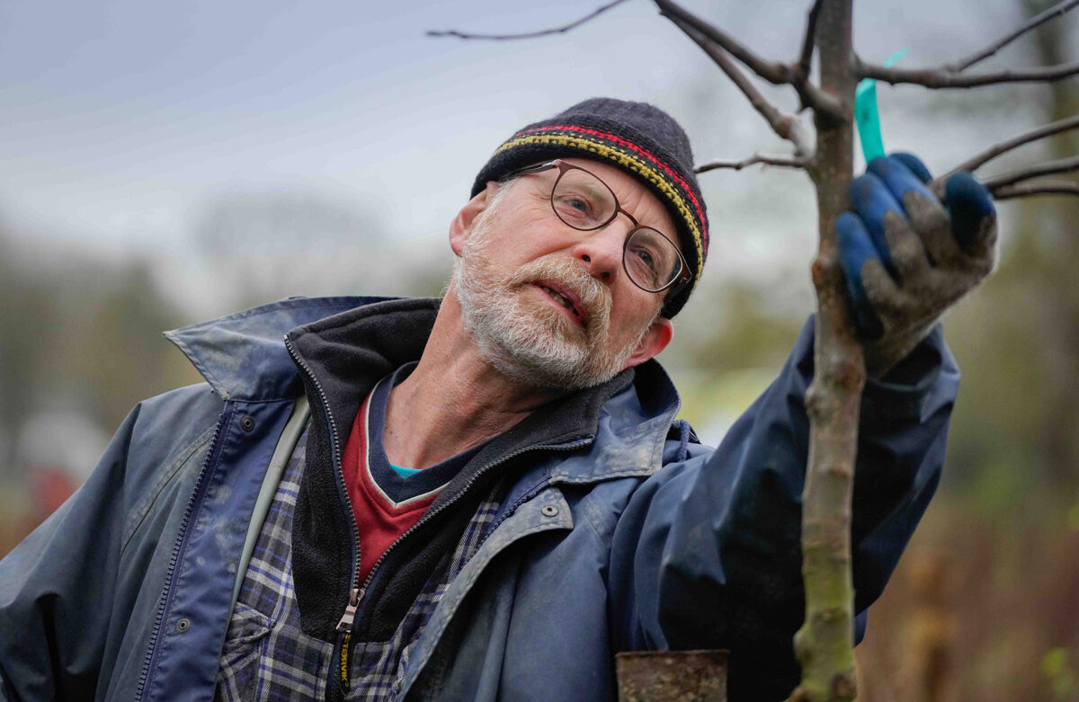 Natuur en Milieufederatie Limburg en IKL zijn op zoek naar boomplantinitiatieven